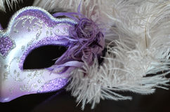 Venetian mask with feathers Royalty Free Stock Images