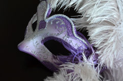 Venetian mask with feathers Stock Images