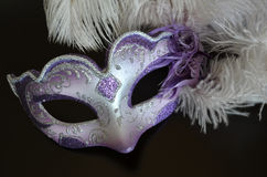 Venetian mask with feathers Stock Image