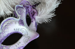 Venetian mask with feathers Royalty Free Stock Photo