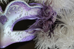 Venetian mask with feathers Stock Photos