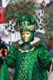 Venetian mask of peacock Stock Photos
