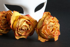 Venetian Mask And Roses. White venetian mask and dry yellow roses on black background Royalty Free Stock Photo