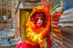 Venetian Masked Model Royalty Free Stock Images