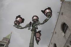 Venetian rose lights Stock Images