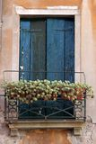 Venetian window Royalty Free Stock Images
