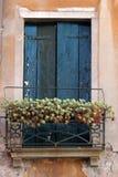 Venetian window Royalty Free Stock Images