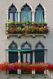 Venetian Windows. Typical windows of Venice with balcony and flowers Stock Photo