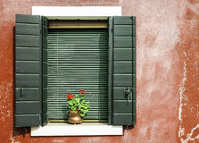 Venetian windows with flowers Stock Images