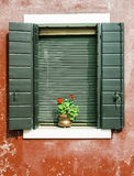 Venetian windows with flowers Stock Image