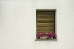 Venetian windows with flowers Stock Photography