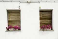 Venetian windows with flowers Stock Photos