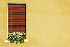 Venetian windows with flowers Royalty Free Stock Photo