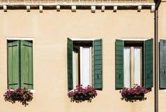 Venetianische Fenster mit Blumen Stockfoto