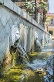 Venetianischer Brunnen mit Löweköpfen Stockbild