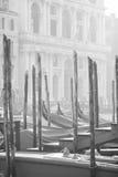 Venetianischer Pier Lizenzfreie Stockfotografie