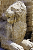 Venetians lion near Famagusta fortress, Cyprus. Venetians lion near old castle tower, Famagusta, North Cyprus Royalty Free Stock Photos