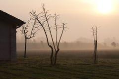 Veneto countryside Stock Photography