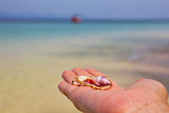 Venez à la mer Photos stock