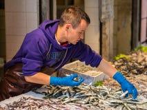 Veneza, Itália - 22 de maio de 2105: Mercados de peixes de Rialto Vendedor de peixe em Fotos de Stock Royalty Free