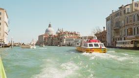 Veneza, a vista do canal grande e a basílica do della de Santa Maria saudam vídeos de arquivo