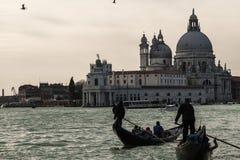 Venezia Royaltyfri Foto