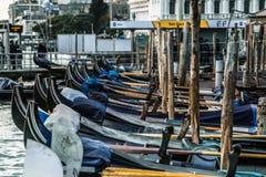 Venezia i vår Fotografering för Bildbyråer