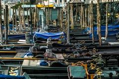 Venezia i vår Arkivbilder