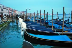 venezia marco πλατειών SAN, ένα από τα panoramas που μπορείτε να δείτε στοκ εικόνα