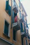 Venezia pingwin fotografia royalty free
