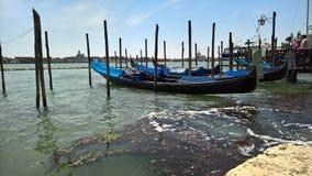 Venezia in primavera Fotografie Stock