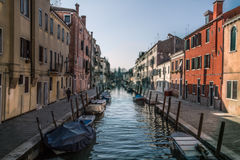 Venezia in spring Stock Image