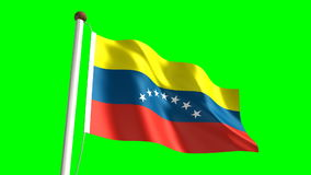 Venezuela flag stock video