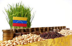 Venezuela flag waving with stack of money coins and piles of wheat. And rice seeds royalty free stock image
