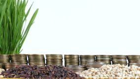 Venezuela flag waving with stack of money coins and piles of wheat. And rice seeds stock footage