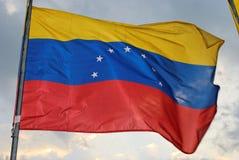 Venezuelanische Markierungsfahne Stockbild