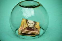 Venezuelanska 100 Bs sedlar och valuta Arkivfoto
