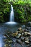 Venford-Bach-Wasserfall Stockbilder