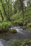Venford Brook Royalty Free Stock Images