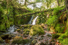 Venford Falls. Located on Dartmoor national park between Ashburton and Princetown in Devon Royalty Free Stock Photos