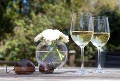 Venga relajan y tienen una bebida en mi patio Fotografía de archivo libre de regalías