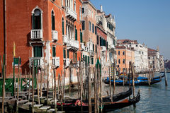 Free Venice Royalty Free Stock Photography - 19916357
