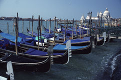 Venice. Gondolas at Shores of Grand Canal stock photos