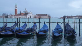 Venice stock video