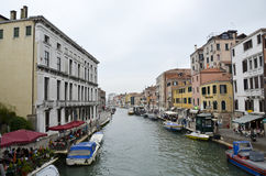 Venice Artist Stock Images