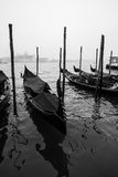 Venice in Autumn. With fog Royalty Free Stock Photo