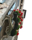 Venice, balcony with flowers stock photography