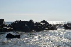 Venice Beach California Stock Photography
