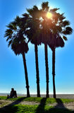 Venice Beach Chillin. A guy chilling in the sun on the grass next to the beach Royalty Free Stock Photography