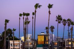 Venice Beach at Dusk royalty free stock images